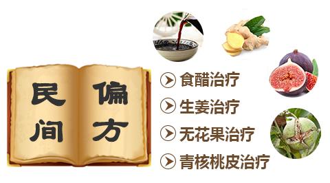 温州无花果叶茶的功效与作用有哪些